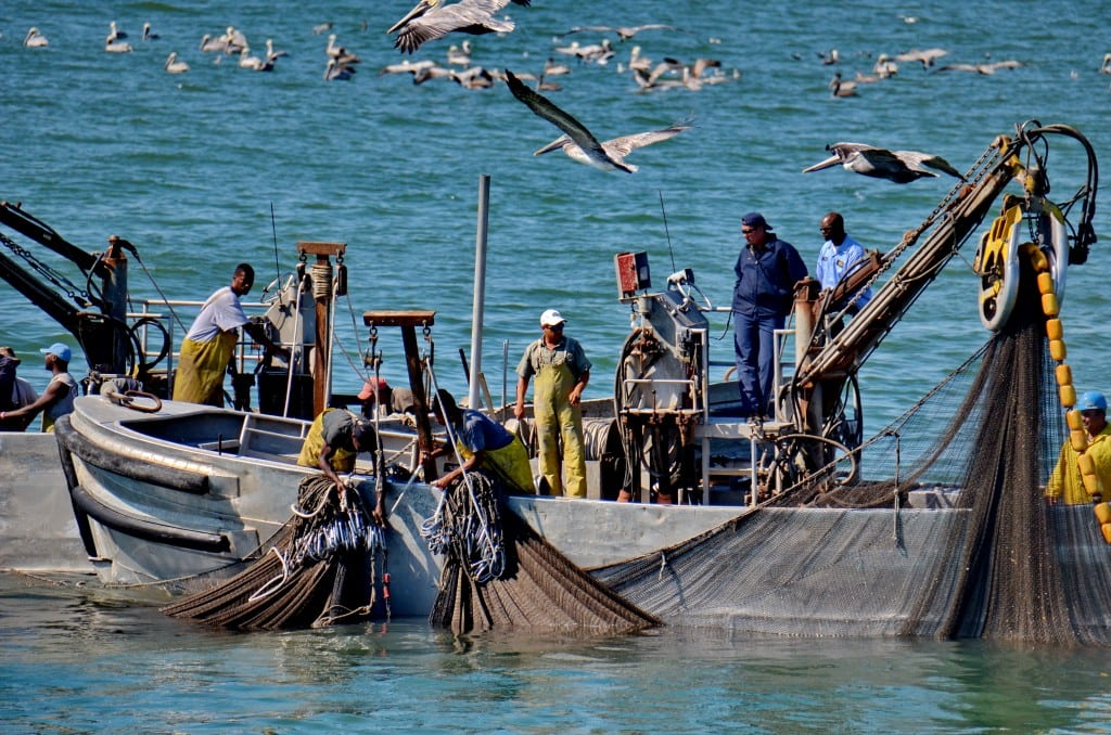 Industrial Photography, Commercial Fisherman in the Gulf