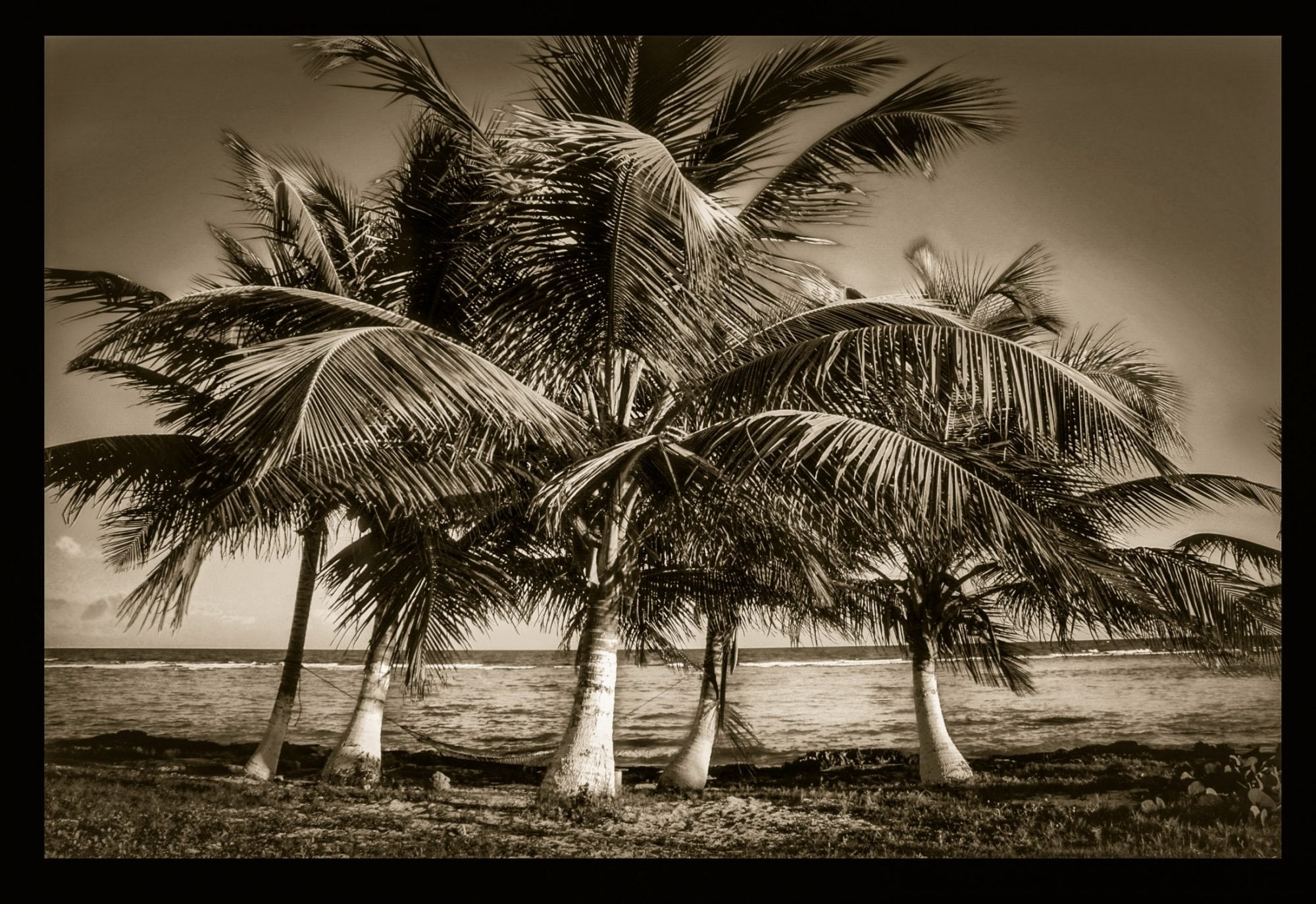 Stanwycks Photography, Black and White in Mexico at the Beach